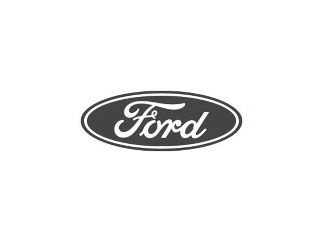 Ford fourgon 2020